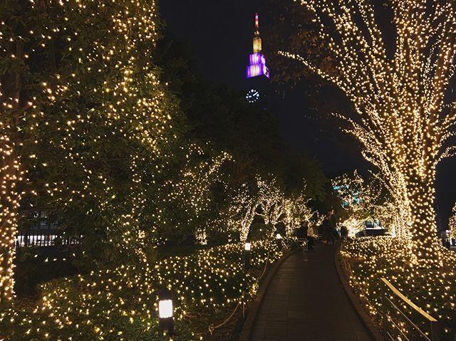 :・今年もキラキラを歩く。・・#southernterrace #kirakira #illumination #夜景 #tokyophotographer #tokyophotography #japanphotography #myview #tokyolandmark #tokyo #japan #walking #nice #happy #fun #shinjuku #shinjyuku #night #東京散歩 #カメラ散歩 #東京 #新宿 #